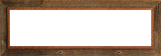 Corporate Thin Picture Frames  frameusacom